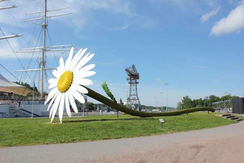 Daisy, Flux Aura environmental art happening, 2011, Turku Finland
